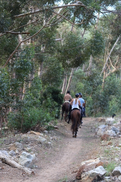 Horse Riding Karwyderskraal (683x1024)