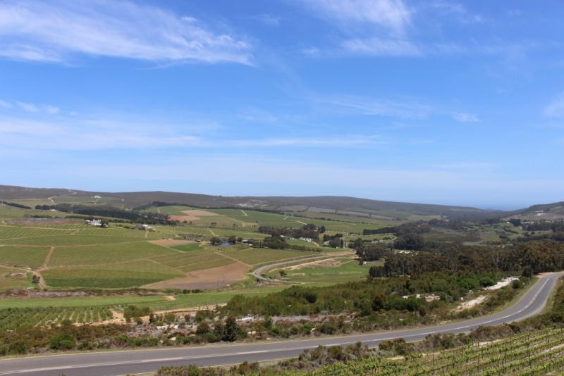 View wine day trip (1024x683)