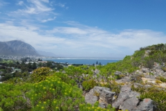 View-of-Hermanus-From-Hoys-Koppie (1024x576)