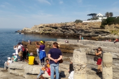 Whale-Watching-Hermanus 1 (1024x572)